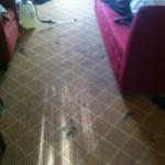 Weston -Carpet-Clean-before