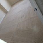 Weston -Carpet-Clean-room